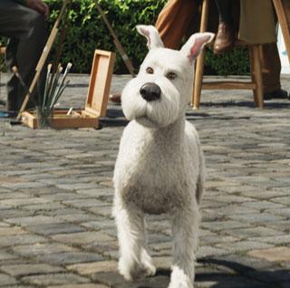 Tintin And Snowy The Bark