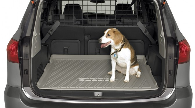 Best Dog Car Seat >> Best Dog-Friendly Vehicles | The Bark