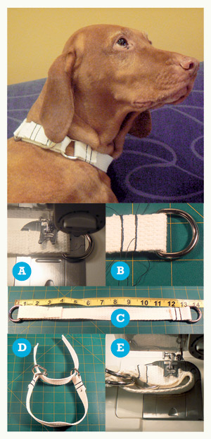 Craft A Collar