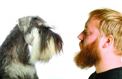 cleanliness of dogs vs men with beards