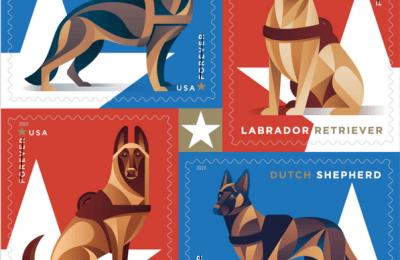 The Bark Magazine The Coolest Dog Magazine Ever