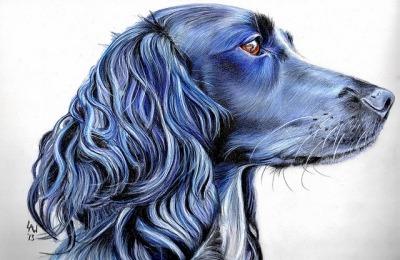 Dog Memorials: Honoring A Life