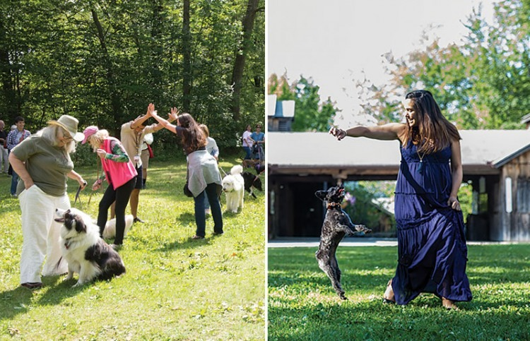 Jacob's Pillow, the renown dance center, school and performance space located in Becket, Massachusetts, hosts its annual Dog Dance on July 14. (photo credit) Hayim Heron, courtesy of Jacob's Pillow.