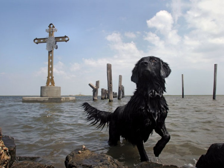Aftermath of Hurricane Katrina, 2005