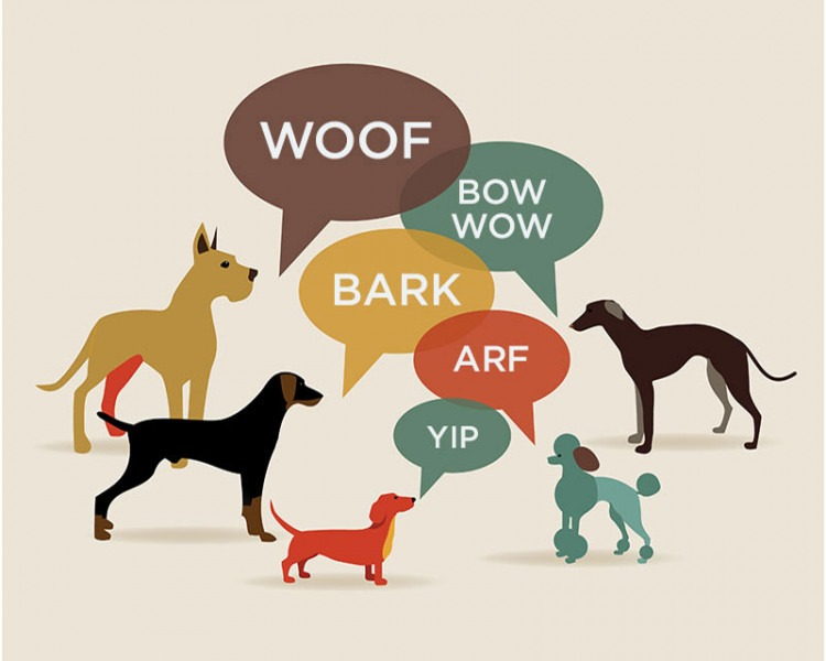 Barks the Sounds that Dogs Make