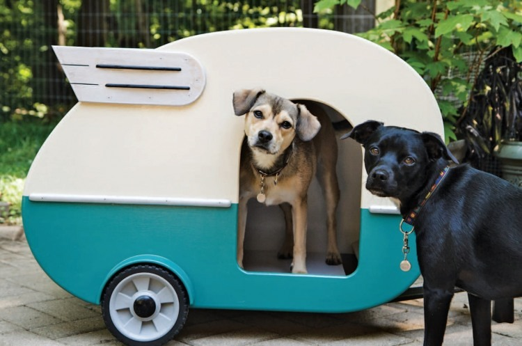 Dog house camper