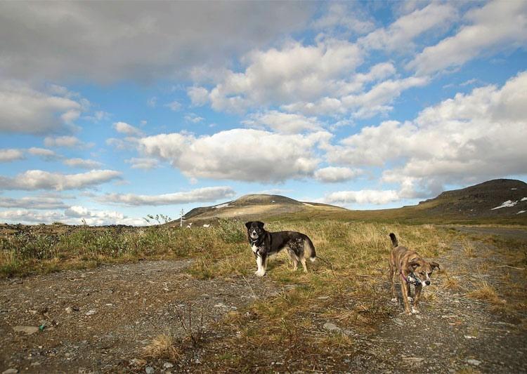 Keno Hill, Yukon Territory, Canada