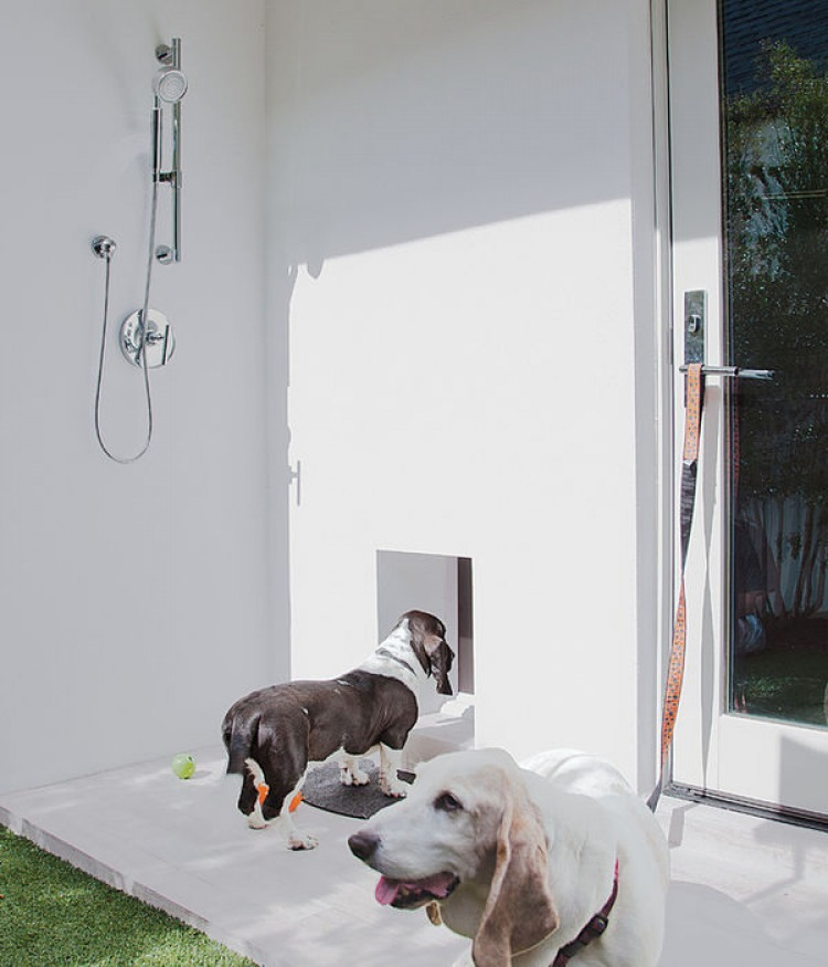 7 Ways to Integrate a Dog Shower Into Your Home | The Bark