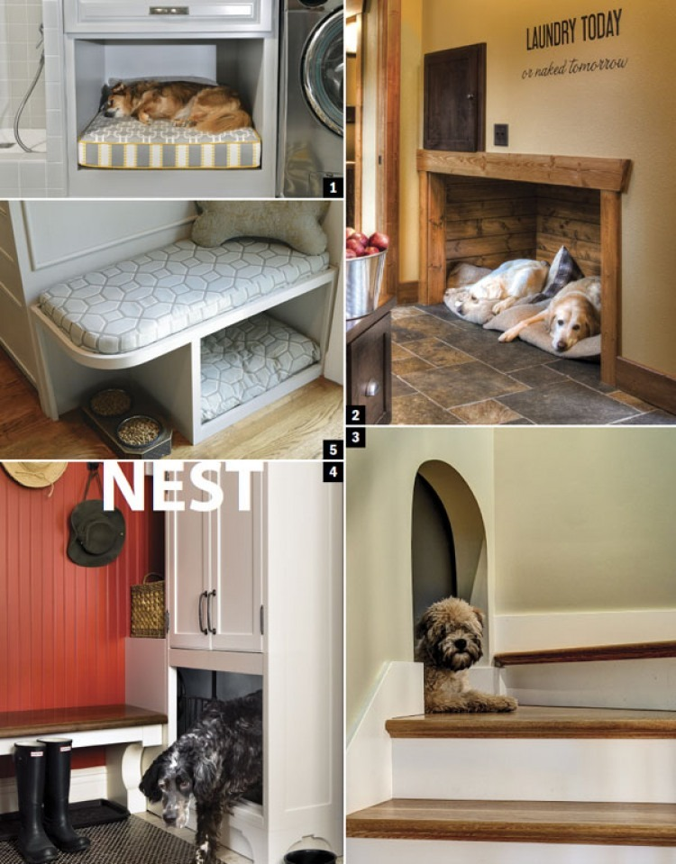 Home Design Inspired By Dogs