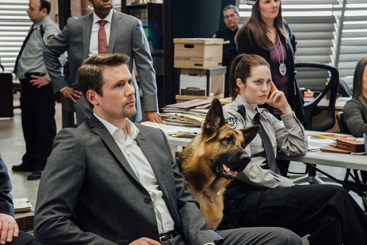 The Canadian TV show 'Hudson & Rex' features actor John Reardon playing Det. Charlie Hudson and German shepherd Diesel vom Burgimwald as Rex. Images courtesy Beta Films.