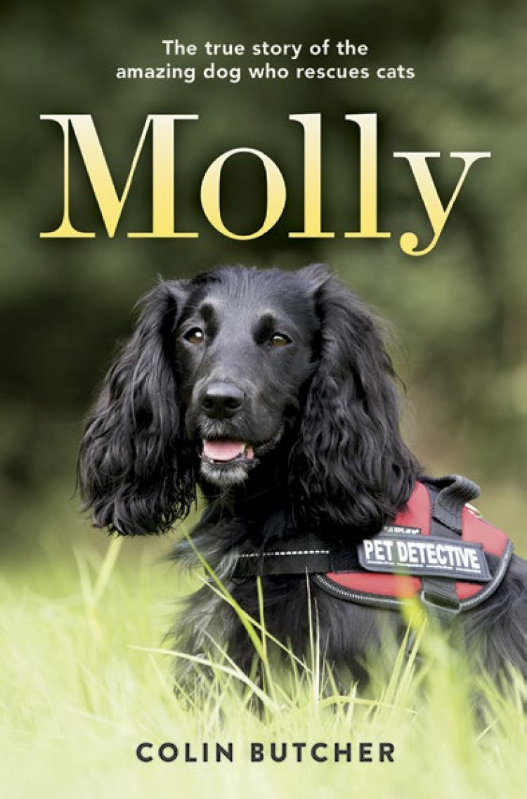 MOLLY BY COLIN BUTCHER
