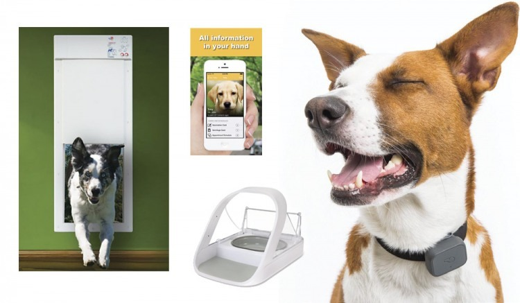 Electronic pet door, MyPets phone app, SureFeed Microchip Pet Feeder and the Whistle dog collar reviewed