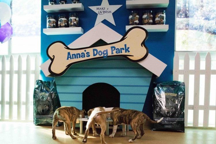 Anna's Dog Park