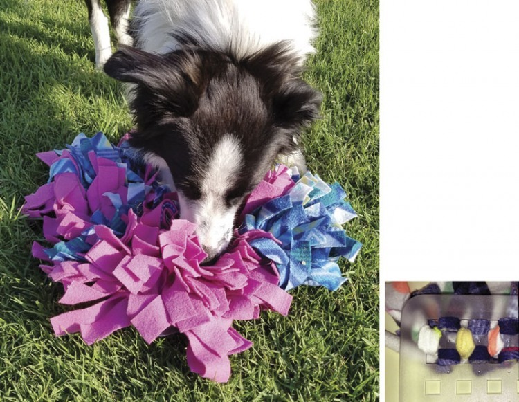 Diy Snuffle Mats For Canine Enrichment And Sniffing The