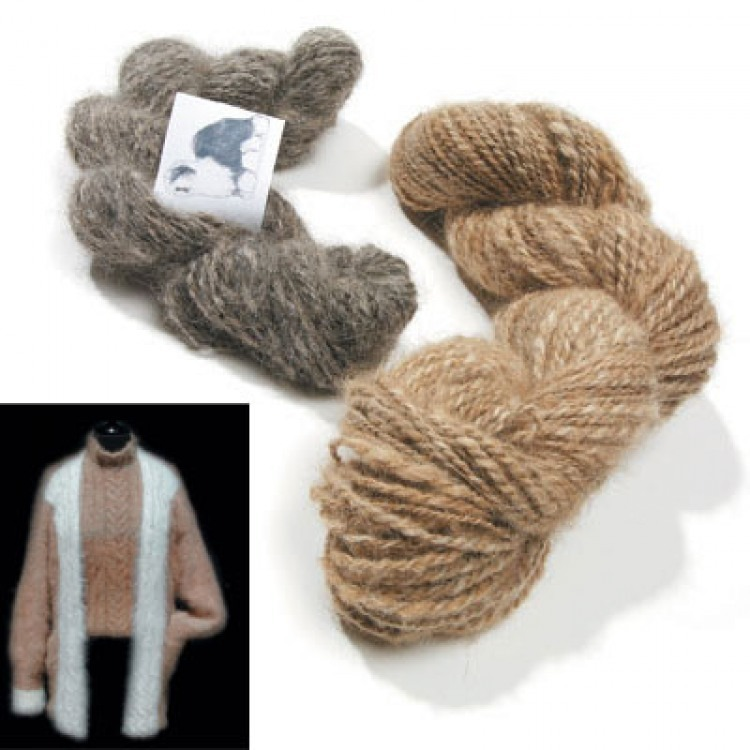 Sweater & Yarn