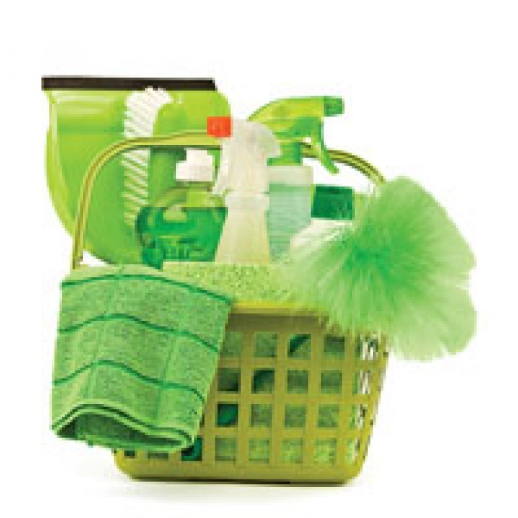 Cleaning up after your dog. Tips on using green products.