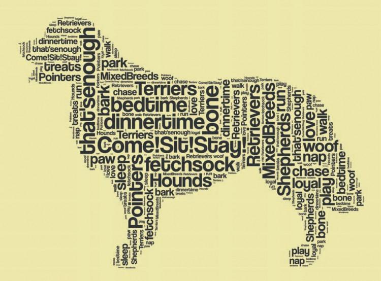 Vocabulary For Dog Training