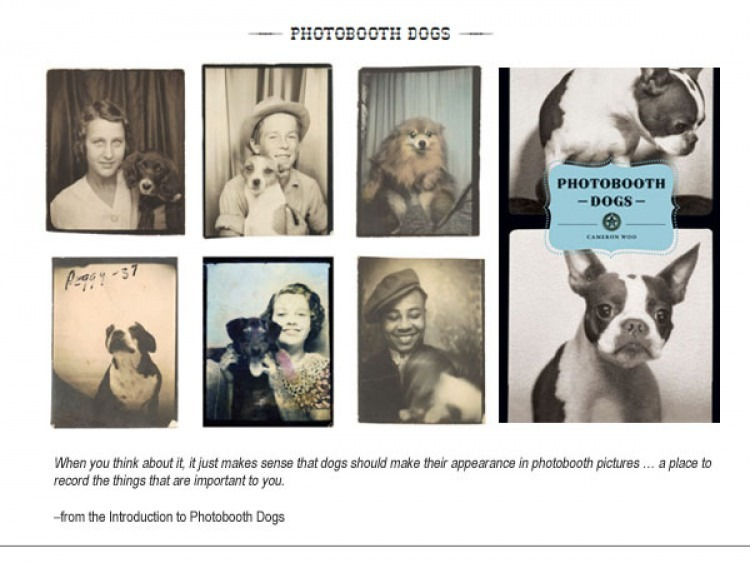 Photobooth Dogs