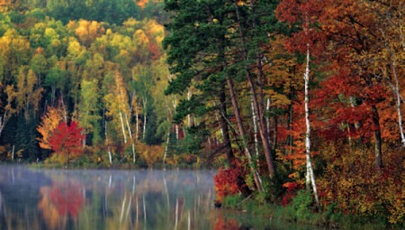 Tamarac Lake in the Chippewa National Forest