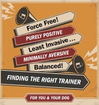 When shopping for a trainer, look behind the advertising language.