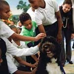 Bo Obama with kids visiting The White House.