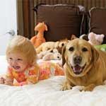Dogs Can Make Children Healthier