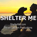 Shelter Me / PBS Screenshot