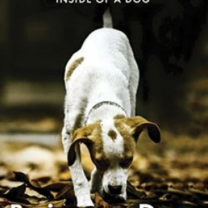 Book Review: Being a Dog by Alexandra Horowitz