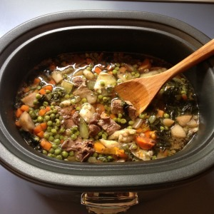 Homemade Dog Food - Slow Cooker - Counting Calories