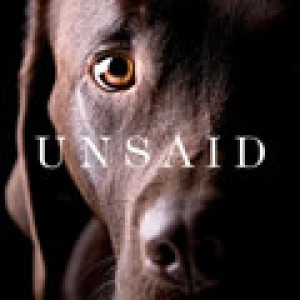 Unsaid