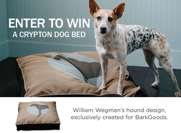Giveaway Crypton Dog Bed The Bark