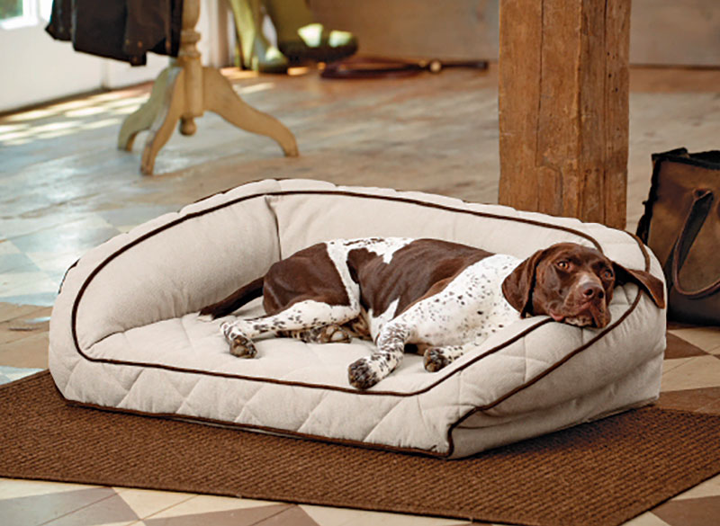 The Orvis Airfoam Bolster Dog Bed Provides Unmatched Comfort At Any Stage In Your S Life After Years Of Testing And Research Has Created
