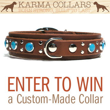 Enter to win - Karma Collars