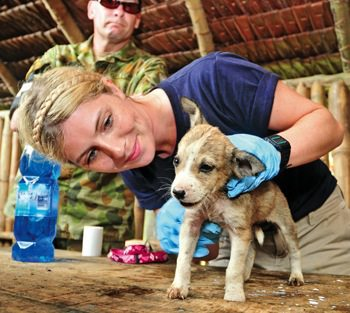 World Vets veterinarian Dr. Lydia Tong examines a pup in Vanuatua.